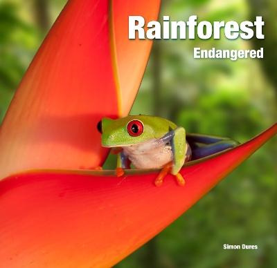 Rainforest: Endangered book