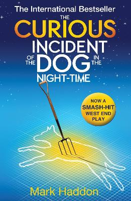 Curious Incident of the Dog In the Night-time book