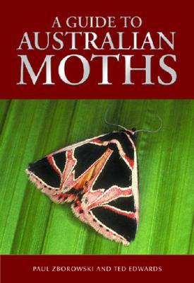 A Guide to Australian Moths by Paul Zborowski