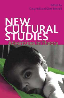 New Cultural Studies: Adventures in Theory by Gary Hall