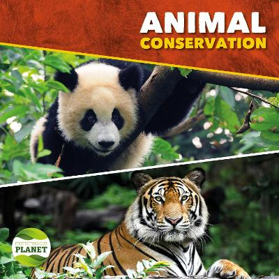 Animal Conservation by Harriet Brundle