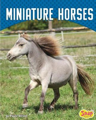 Miniature Horses by Paula M. Wilson