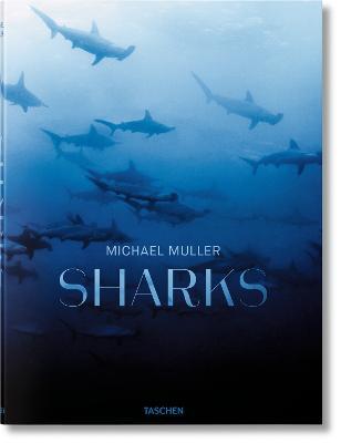 Sharks book