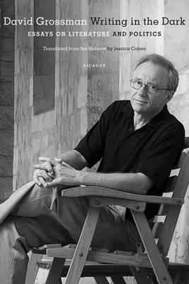 Writing in the Dark by David Grossman