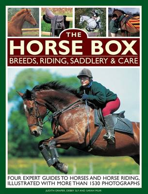Horse Box: Breeds, Riding, Saddlery & Care by Judith Draper