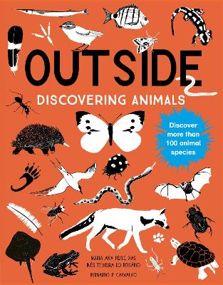 Outside: Discovering Animals by Maria Ana Peixe Dias