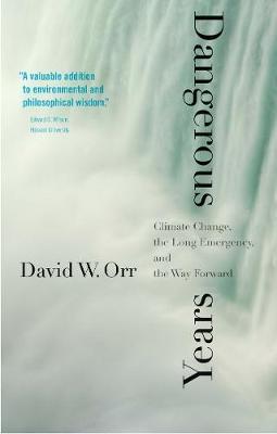 Dangerous Years by David W. Orr