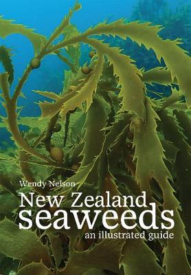 New Zealand Seaweeds: An Illustrated Guide: 2020 by Wendy Nelson