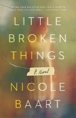 Little Broken Things by Nicole Baart