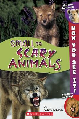 Now You See It! Small to Scary Animals by Aubre Andrus