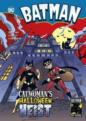 Catwoman's Halloween Heist book