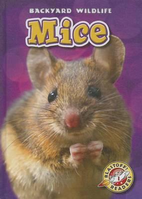 Mice by Kari Schuetz