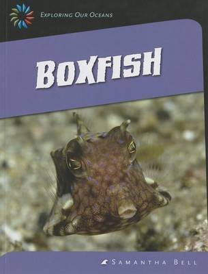 Boxfish by Samantha Bell