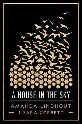 House in the Sky book