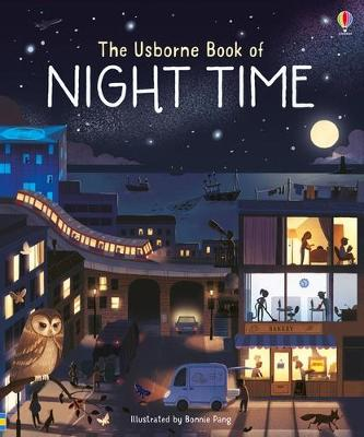 Big Picture Book of Night Time book