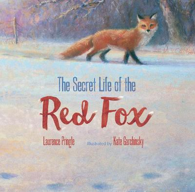 The Secret Life of the Red Fox by Laurence Pringle