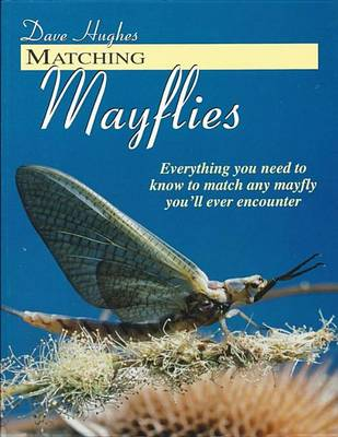 Matching Mayflies by Dave Hughes