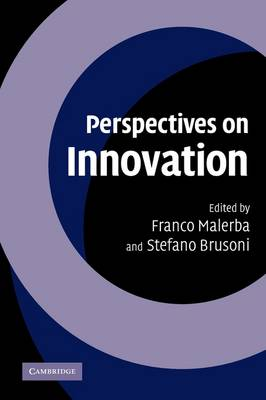 Perspectives on Innovation by Franco Malerba