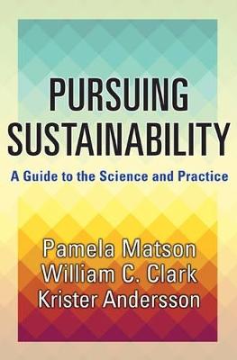 Pursuing Sustainability by Pamela Matson