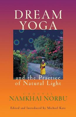 Dream Yoga And The Practice Of Natural Light book