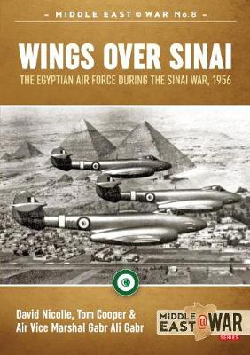 Wings Over Sinai by David Nicolle