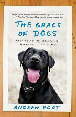 The Grace Of Dogs: A Boy, a Black Labrador and a father's search for the canine soul by Andrew Root
