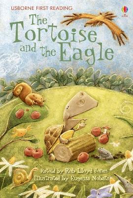 Tortoise and the Eagle by Rob Lloyd Jones