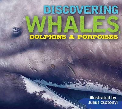 Discovering Whales, Dolphins and Porpoises by Kelly Gauthier