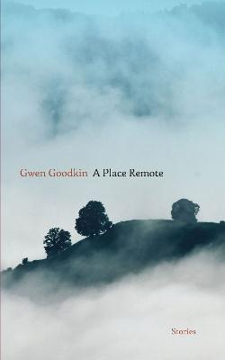 A Place Remote: Stories by Gwen Goodkin