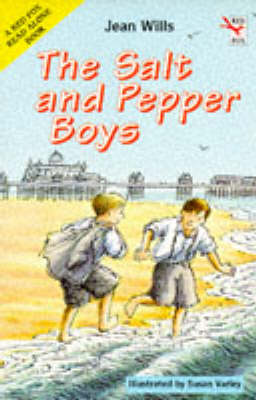 The Salt and Pepper Boys by Jean Wills