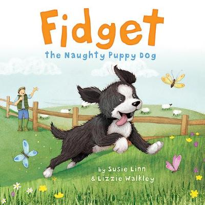 Fidget book