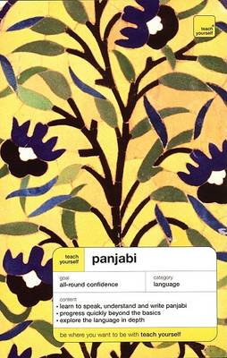 Teach Yourself Panjabi Complete Course by Surjit Singh Kalra