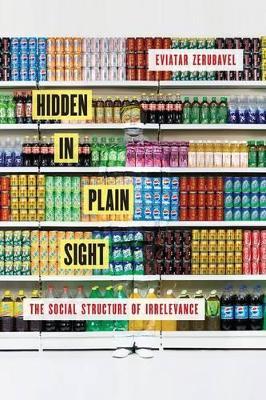 Hidden in Plain Sight by Eviatar Zerubavel