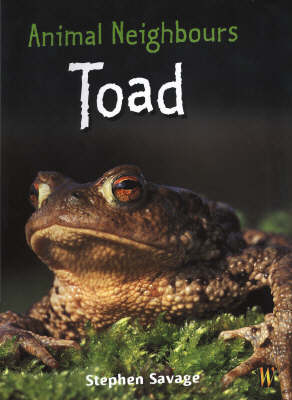 Animal Neighbours: Toad by Stephen Savage