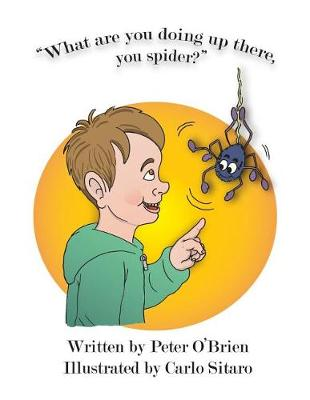 What Are You Doing Up There, You Spider? by Peter O'Brien