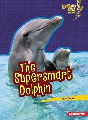 The Supersmart Dolphin by Mari Schuh
