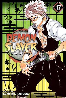 Demon Slayer: Kimetsu no Yaiba, Vol. 17 book