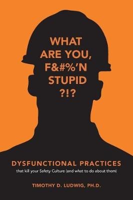 Dysfunctional Practices by Timothy D. Ludwig