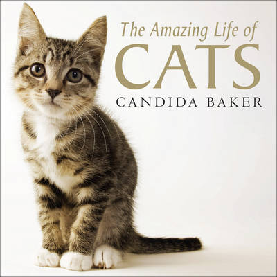 The Amazing Life of Cats by Candida Baker