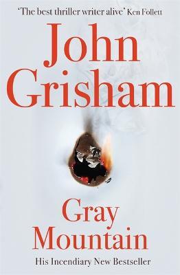 Gray Mountain book