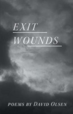 Exit Wounds by David Olsen