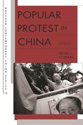 Popular Protest in China by Kevin J. O'Brien