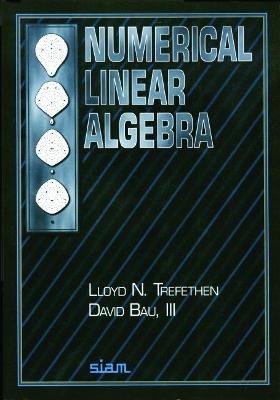 Numerical Linear Algebra book