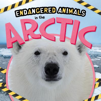 In the Arctic by Emilie Dufresne