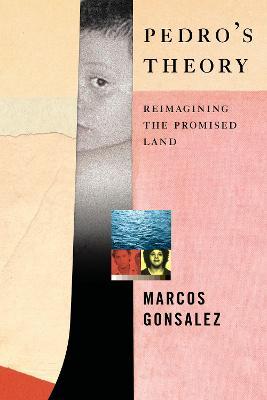 Pedro's Theory book