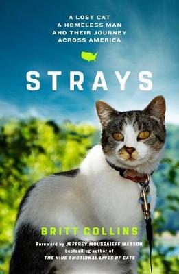 Strays by Britt Collins
