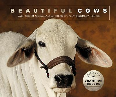 Beautiful Cows: Portraits of champion breeds by Valerie Porter