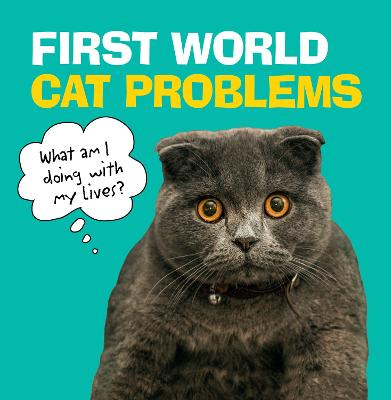First World Cat Problems by