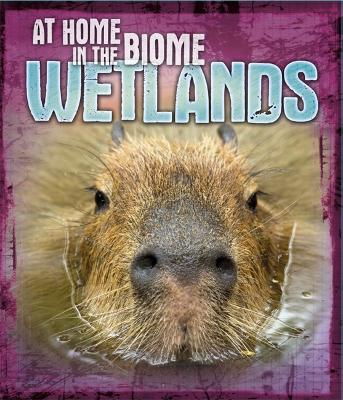 At Home in the Biome: Wetlands by Louise Spilsbury
