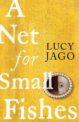 A Net for Small Fishes book